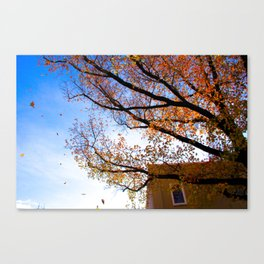 Sewickley PA in the Fall Canvas Print