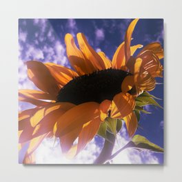 FLOWER 039 Metal Print