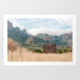 Bear and Mountain Lion Country Art Print