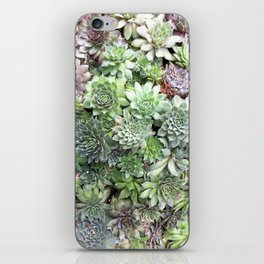 Desert Flower I iPhone Skin