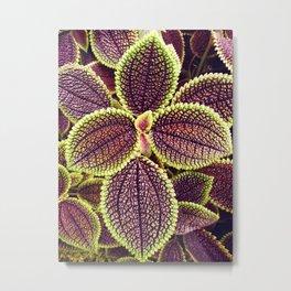 Tropical Leaves III Metal Print