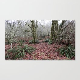 Enterance to the Woods Canvas Print