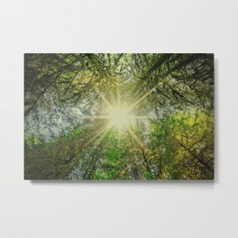 The Breakthrough Metal Print