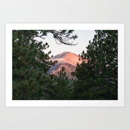 Mount Meeker Art Print