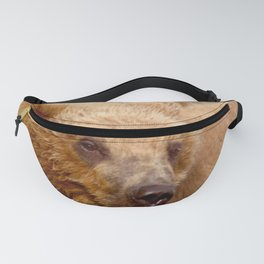 Brown Bear Grizzly Fanny Pack