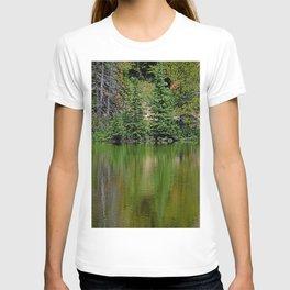 Lake Irene 2018 Study 7 T-shirt