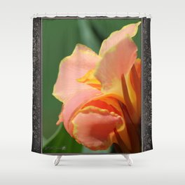 Dwarf Canna Lily named Corsica Shower Curtain