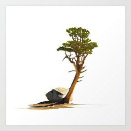 Lone Foxtail Pine Art Print