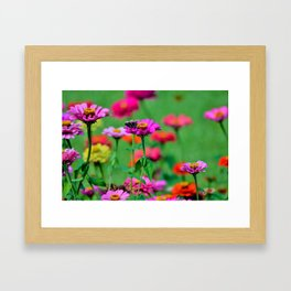 Flowers & the Butterfly Framed Art Print
