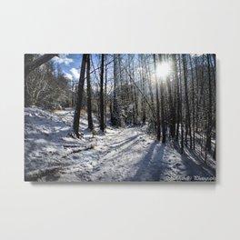 Walking in a Winter Wonderland Metal Print