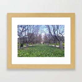 idontrememberwhere Framed Art Print