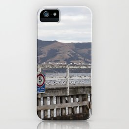 Slow Terns of Akaroa iPhone Case
