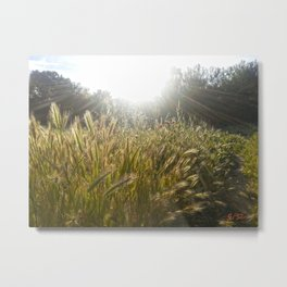 Wheat and poppies Metal Print