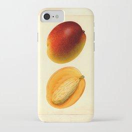 Vintage Botanical Mango iPhone Case