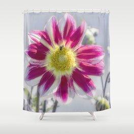 Delicious Dahlia Shower Curtain