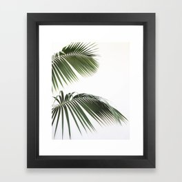 Fronds Framed Art Print