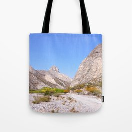 Mexican desert Tote Bag