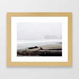 La Push Beach Framed Art Print