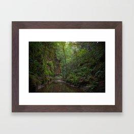 aptos creek canyon Framed Art Print
