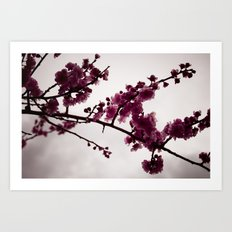 March Notes Art Print