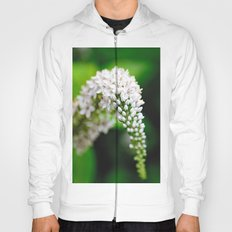 Spring has Bloomed Hoody