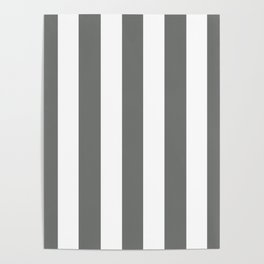 Nickel grey -  solid color - white vertical lines pattern Poster