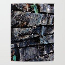 Cut tree Poster