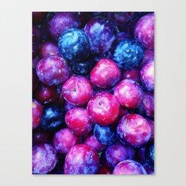 Plums Canvas Print