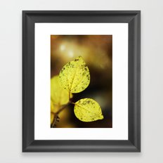 yellow leaves. Framed Art Print