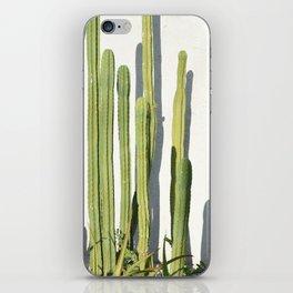 cali cacti iPhone Skin