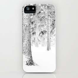 Winter Whiteout iPhone Case