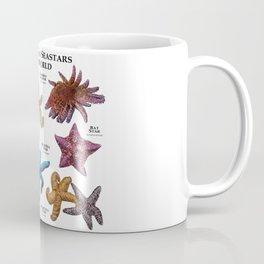 Starfish and Seastars of the World Coffee Mug