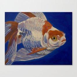 Ryukin Goldfish II Canvas Print