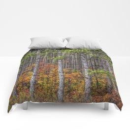 Small Saplings among a Grove of Pine Trees Comforters