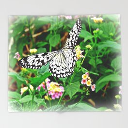 The Common Mime Butterfly on flowers Throw Blanket