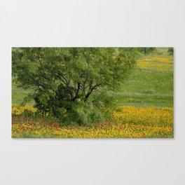 Windblown Palette Canvas Print