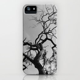 Old Spooky Bare Tree Branches iPhone Case