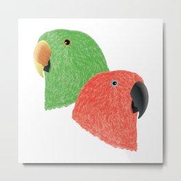 Eclectus Parrots Metal Print