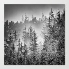 BW. Early moorning... Into the foggy woods Canvas Print