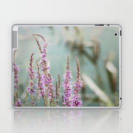 Lakeside Colors Laptop & iPad Skin