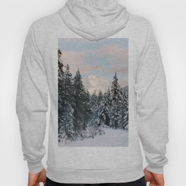Mt. Hood National Forest Hoody
