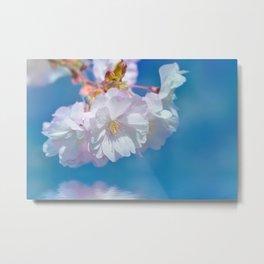 Spring 170 Metal Print