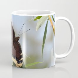 Mourning Cloak Butterfly Sunning Coffee Mug