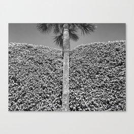 landscape architecture no.2 Canvas Print