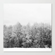 Ansels Trees Canvas Print