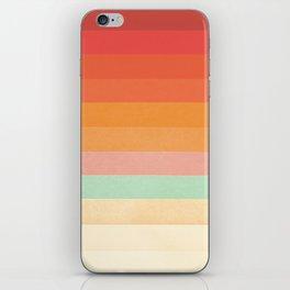 Rainbow Chevrons II iPhone Skin