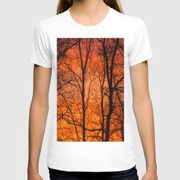 Leafless Trees At October Sunrise  T-shirt