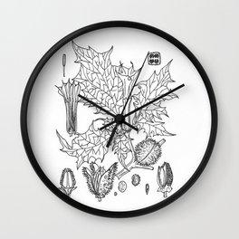 datura stramonium Wall Clock