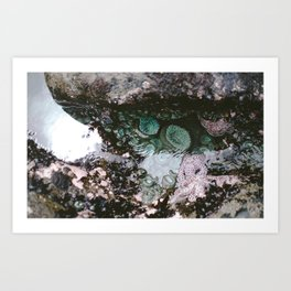 morning sea star Art Print