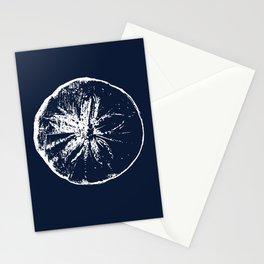 Naval Blue Sand Dollar Seashell Beach Design Stationery Cards